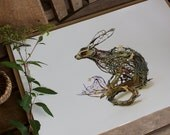 """the curiosity of laurices III - hare- Original Giclee Edition Print - 13x19"""""""