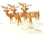Little Plastic Deer, Snow Globe Deer, and Diorama Art, A Set Of SIX