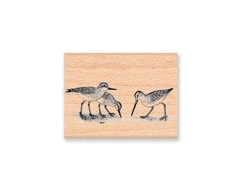 SANDPIPER RUBBER STAMP~Coatal Birds~Coast Shore Snipe~Shore Birds~Ocean Decor~Sea Life~ Mountainside Crafts (36-02)