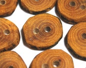 Wood Buttons, Natural Wood Buttons, Craft Buttons, Handmade Wooden Crabapple Tree Branch Buttons, 3/4 Inch (20 mm), Set of 9