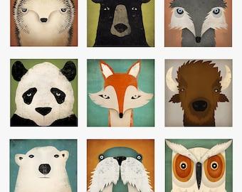 YOUR CHOICE NVS Animals  Hedgehog Black Bear Wolf Bison Buffalo Panda Fox Polar Bear Walrus Owl Graphic Art archival pigment print Signed