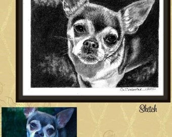 Pet Portrait Custom Dog or Cat Sketch Pet Lover Gift Idea 8x10