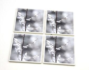 Tile Coaster, Christmas Decor, White and Brown, Winter Decor,  Snow Scene, Tree Branch,  4X4 Tile, Set of 4