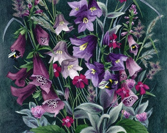 Fine Art Print of Original Watercolor Painting - Wayside Bouquet