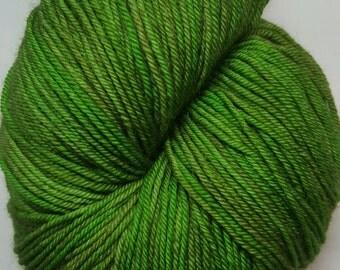 Robin Hood colorway! Glad Rags 100% Superwash Merino, 100 grams, 438 yards, hand-dyed sockweight