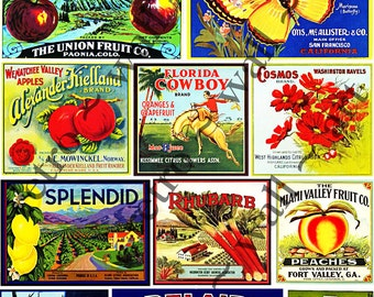 PRINTED Fruit Crate Labels Kitchen Wall Art Apple Crate Label Old Fruit Box Label Citrus Label Kitchen Decoration Kitchen ClipArt 143a