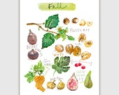 Fall fruits, Fruit print, 8X10 print, Watercolor fruit art, Kitchen art print, Home decor, Fruit painting, Food artwork, Autumn print