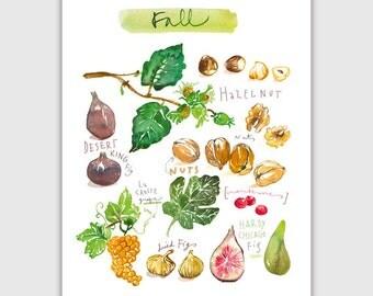 Fall fruits, Fruit print, 8X10 print, Watercolor fruit art, Kitchen art print, Home decor, Fruit painting, Food artwork, Autumn print