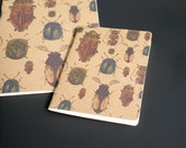 SALE Notebook in Beetle Print // Sketchbook - A6 Notebook - A5 Notebook - Handmade Journal - Gifts for Her - Gifts for Him - Stocking Filler