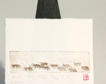 Ants & Rain - Original Etching