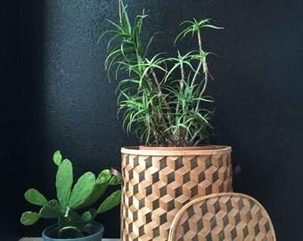 large geometric woven wooden basket / planter