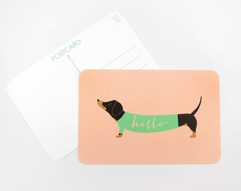 Dachshund in a Sweater: Set of 10 or More Postcards
