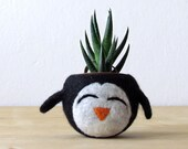 Free Shipping - Felt succulent planter / penguin planter / cactus planter  / happy penguin / Choose your color!