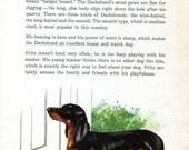 Dachshund Vintage Dog Print Luis Henderson 1950s Dog Art Illustration Wall Decor Dog on Doorstep
