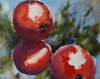 "red, apples, blue, floral, fruit, kitchen art, macro. Red Appples 2- Original watercolor painting (6"" x 6"")."