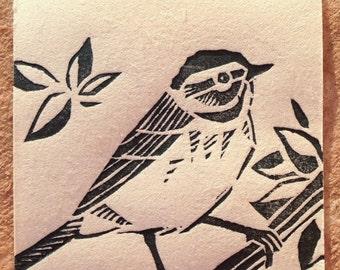 Palm warbler (redux)