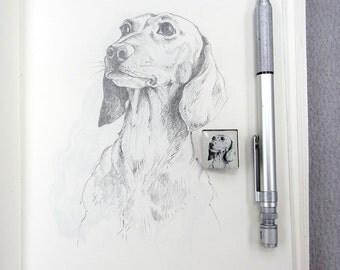 Daschund Sausage Dog Sketch Tile brooch.