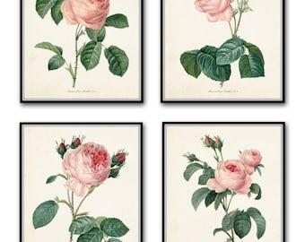 Redoute Roses Botanical Print Set No. 1 - Botanical Prints - Giclee - Canvas Art Print - Antique Botanical - Posters - Multiple Sizes