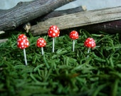 Miniature Bright Red Spotted Mushrooms , Fairy Garden, Terrarium Garden,  Miniature Garden , Garden Miniature