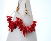 Bamboo coral hoop earrings, red coral earrings, red and gold earrings, 14k gold filled dangle earrings