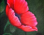 8x10 Print Poppy Remembrance Day Flanders Fields Flower Floral Bloom Garden Soldier Veteran Vet Memorial Art Reproduction Natalie VonRaven