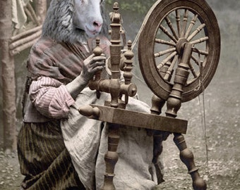 The Spinner, Anthropomorphic, Animal Art, Vintage Photo, Whimsical Art, Photo Collage, Sheep and spinning wheel, Unique art print