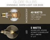 LED & Incandescent Edison Filament Bulbs