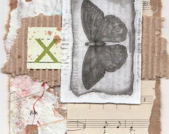 Butterfly - One Staple Collage