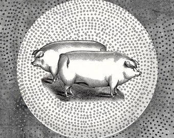 Two Pigs melamine plate with hand drawn Polkadots