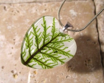 Stair Step Moss (Hylocomium splendens) Glass Heart Necklace, woodland, bryophytes, plant jewellery, nature, leaf,  silver plated chain