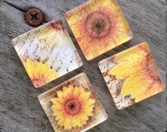 Glass magnets, Sunflower magnets, Glass Fridge magnets, Kitchen magnets, Cubicle decor, Teacher gift, Sunflower decor, Sunflowers, Gifts