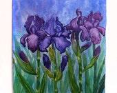 Iris Painting, Watercolor Iris, Iris Art, Watercolor Flowers, Flower Painting, Floral Art, Purple Iris, Blooming Iris