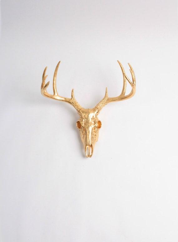 Deer Skull Wall Decor : Mini gold animal skull wall decor by white faux taxidermy
