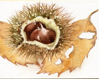 Chestnut and leaves, Original Aceo, watercolor painting,  leaf art, forest, Autumn watercolour,  chestnut aceo, atc, miniature art, leaf art