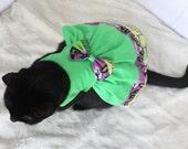 Dress for Halloween for Cat