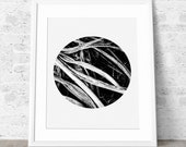 Nordic Art, Printable Art, Nature Photo, Grass Abstract, Dark Grey, Black and white, Minimalist Print.