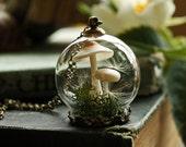 Collier terrarium champignon, bijoux terrarium miniature, pendentif en graines de pissenlit, mousse de forêt, véritable mousse, pissenlit souhait pendentif