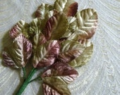 Velvet Millinery Leaves Spray of 18 Beige Pale Green Rose Pink Mauve for Weddings Hats Corsages Crafts 7LN0001M