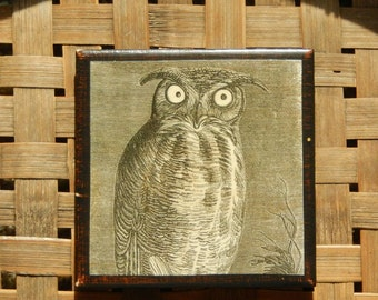 Ceramic Tile - Owl