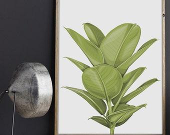 "A4 ""Rubber Plant"" geometric art print"