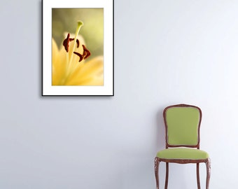 Macro flower photography, floral wall decor, lily photo print, botanical wall art print, yellow, nature fine art photograph,summer decor