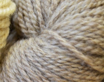 CAFE AU LAIT color Sport wt yarn from Louisiana Native sheep