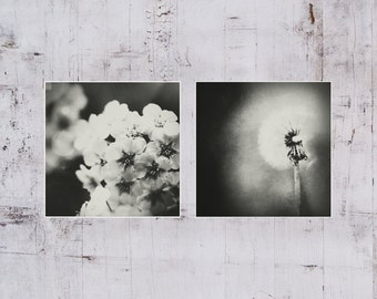A set of 2 Black and white Fine art photography wall art Floral fine prints Girly Wall decor Modern Square Wall decor Flower Home decor Art