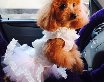 Custom Made Dog wedding dress made of tulle skirt  and small flowers  details