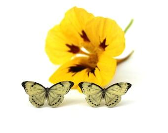 White butterfly earrings, butterfly earrings, butterfly studs, butterfly posts, butterfly jewellery, butterflies, butterfly