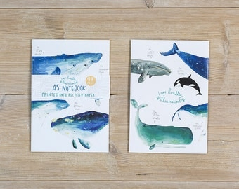 Whales of the World Notebook