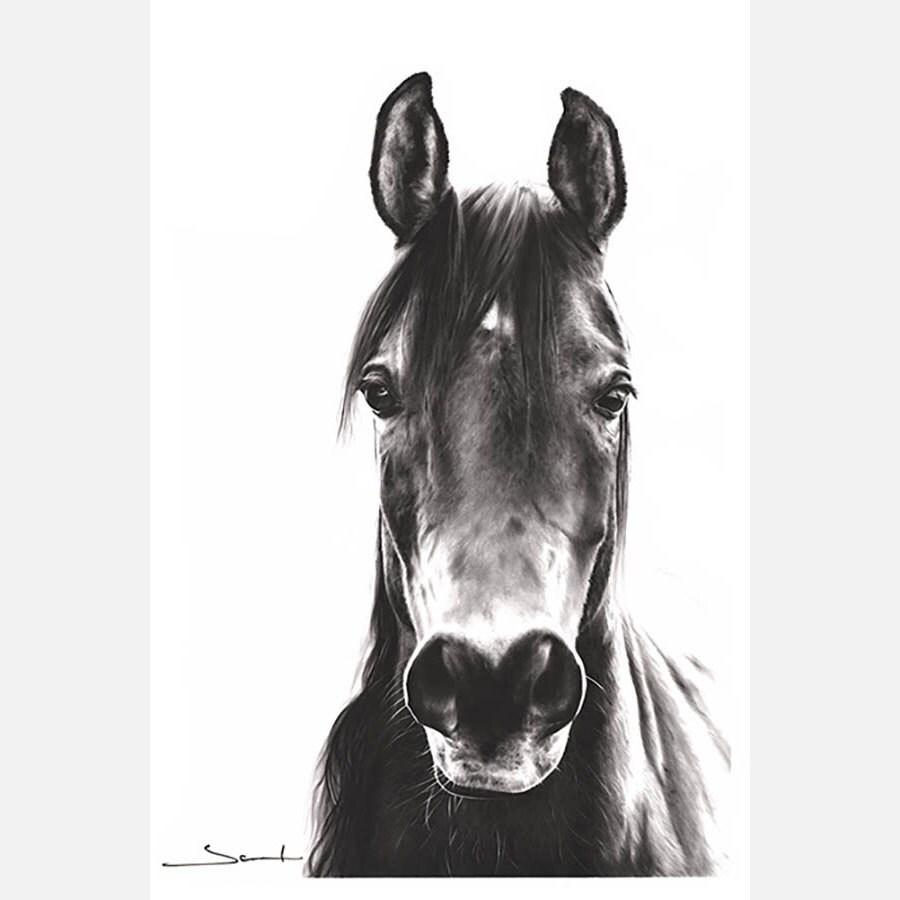 White apron runescape - Horse Oil Painting Original Oil Painting Black And White Art Horse Painting Horse Artwork Horse Decor Horse Wall Art Horse Portrait