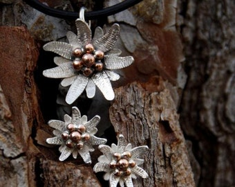 set of Silver Flower edelweiss