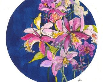 Cattleya Orchids // A3 Giclée Print // Illustration