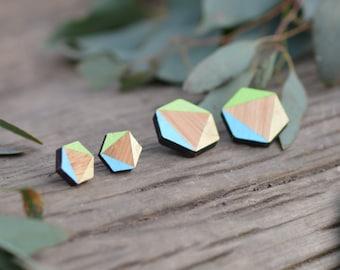 Aqua blue - hexagon rosewood stud earrings